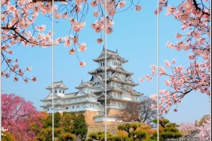 Каталог фотопечати - Китай и Япония