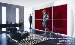 Шкаф купе в гостинную со стеклом